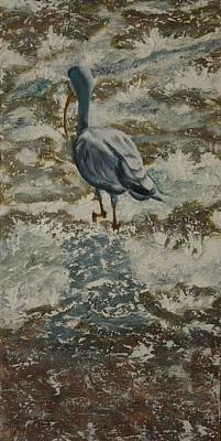Ibis Mixed Media - Ibis by Linda Eversole