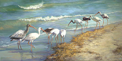 Seaweed Painting - Ibis On Marco Island by Laurie Hein