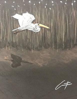 Ibis Over The Marsh Art Print