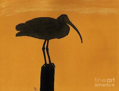 Drawing - Ibis - Silhouette by D Hackett