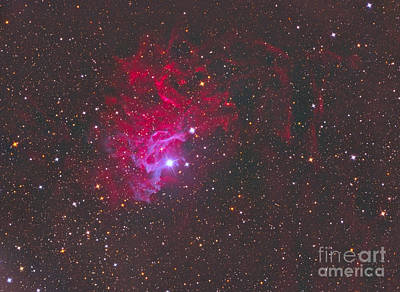 Ic 405, The Flaming Star Nebula Art Print by Reinhold Wittich