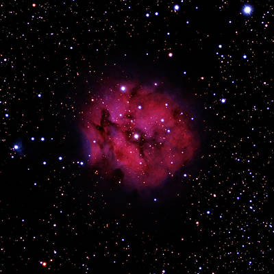 Photograph - Ic 5146 The Cocoon Nebula In Cygnus by Alan Vance Ley