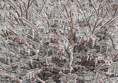 Photograph - Ice Abstract 1 by Barbara McMahon