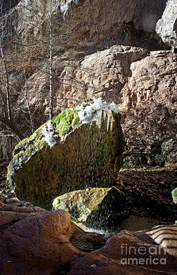 Photograph - Ice And Moss At Tonto Natural Bridge by Lee Craig
