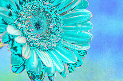 Floral Abstract Digital Art - Ice Blue by Carol Lynch