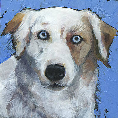 Cattle Dog Painting - Ice Blue by Mary Medrano