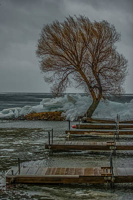 Peaceful Scene Photograph - Ice Buildup On Milacs by Paul Freidlund