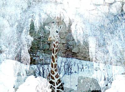 Photograph - Ice Cave Giraffe by Diane Alexander