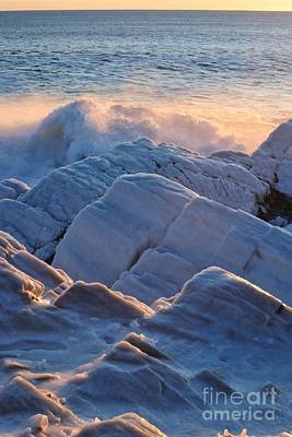 Photograph - Ice Cold by Paul Noble