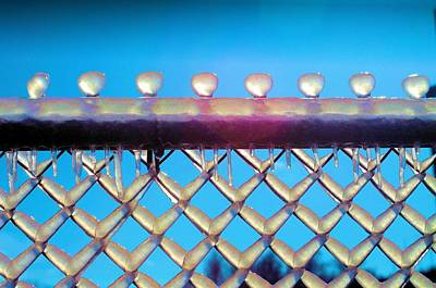 Photograph - Ice Covered Fence by Douglas Pike