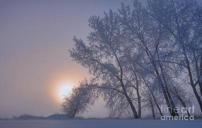 Ice Fog Photograph - Ice Crystals In The Sky by Dan Jurak