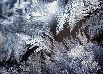 Window Photograph - Ice Crystals by Scott Norris