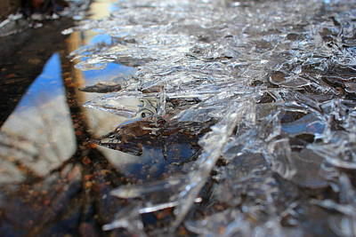 Photograph - Ice Crystals by Trent Mallett