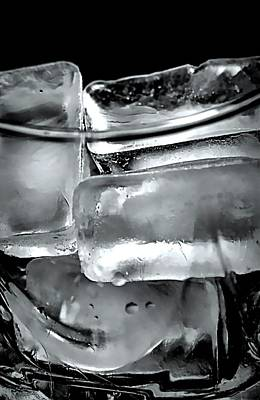 Photograph - Ice Cube Cheer by Diana Angstadt