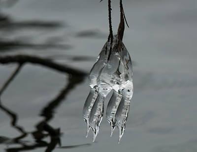 Photograph - Ice Dance by Lara Ellis