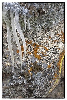 Photograph - Ice Fall by Mary Jane Utley
