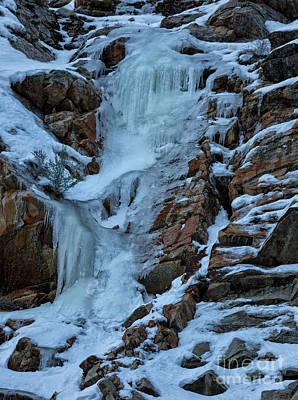 Rabbit Marcus The Great - Ice Falls by Mitch Johanson