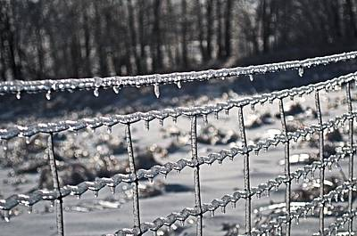 Photograph - Ice Fence by Douglas Pike