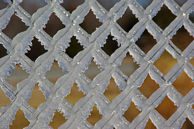 Photograph - Ice Fence by Robyn Stacey