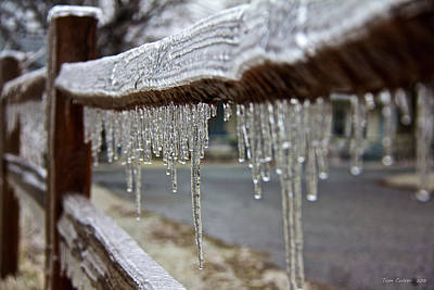 Photograph - Ice Fence by Tom Culver