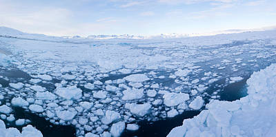 Ice Floating In Fjord, Tiniteqilaaq Art Print by Panoramic Images