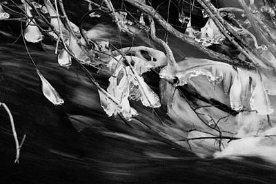 Photograph - Ice Formations II  In Bw by Margie Avellino