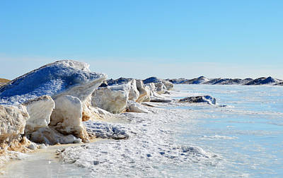 Monochrome Landscapes - Ice Frog by Linda Kerkau