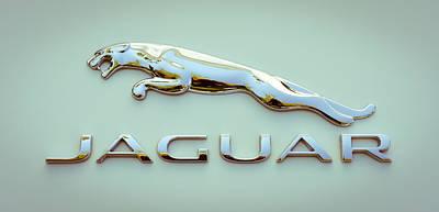 Photograph - Ice Gold Jaguar by Ronda Broatch