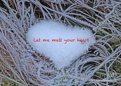 Photograph - Ice Heart by Phil Banks