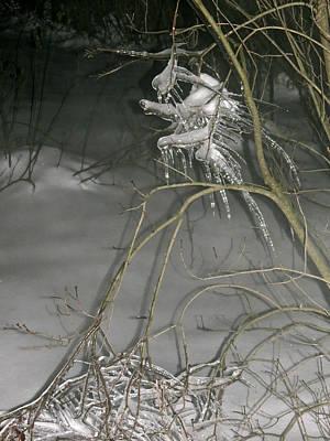 Ice Imp Art Print by Azthet Photography