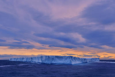 Photograph - Ice Island by Tony Beck