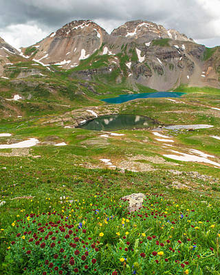 Photograph - Ice Lake Basin Wildflowers by Aaron Spong