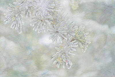 Digital Art - Ice Needles by Michelle Ayn Potter