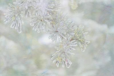 Ice Needles Art Print