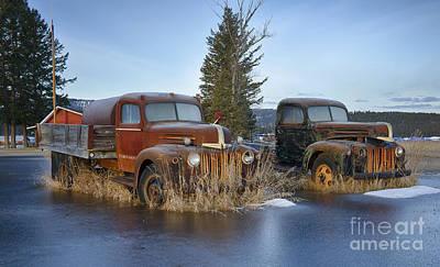 Photograph - Ice O Lated by Idaho Scenic Images Linda Lantzy