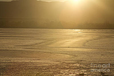 Gold Photograph - Ice Of Gold by James BO  Insogna
