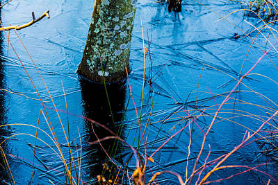 Benchmark Photograph - Ice Patterns by Kathy Liebrum Bailey