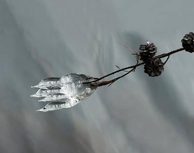 Photograph - Ice Sculpture 1 by Lara Ellis