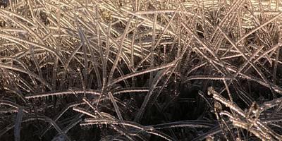 Photograph - Ice Shreds by Douglas Pike