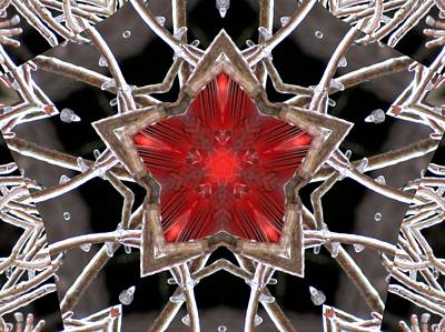 Photograph - Ice Star by MTBobbins Photography