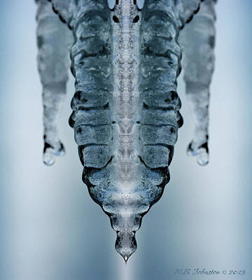 Photograph - Ice Stinger by WB Johnston