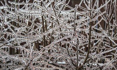 Ice Storm Art Print by Arlene Carmel