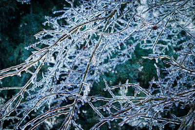 Photograph - Ice Storm by Melinda Fawver