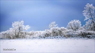 Winter Photograph - Ice Storm Memories by LeeAnn McLaneGoetz McLaneGoetzStudioLLCcom