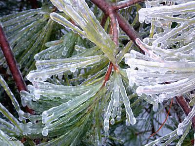 Photograph - Ice Storm by Shana Rowe Jackson