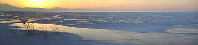 Photograph - Ice Tracks by David Andersen
