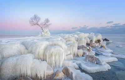 Frost Wall Art - Photograph - Ice Wonderland by Larry Deng
