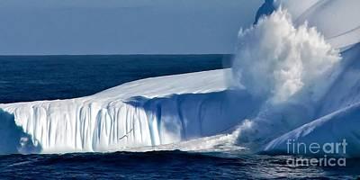 Photograph - Iceberg by Kate McKenna