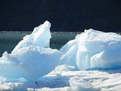 Photograph - Iceberg by Lew Davis