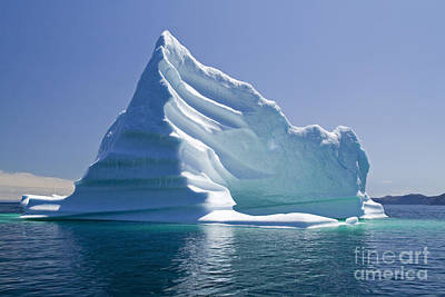 Photograph - Iceberg by Liz Leyden